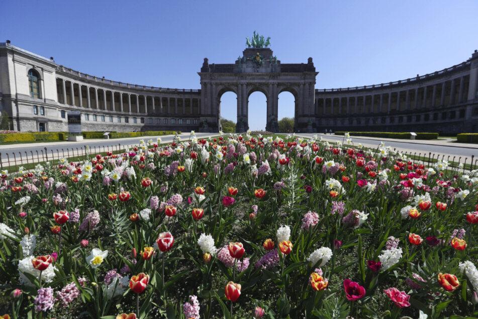 Brüssel: Der Park des 50-jährigen Jahrestags steht voller blühender Blumen und ohne Menschen während der Covid-19-Epidemie.