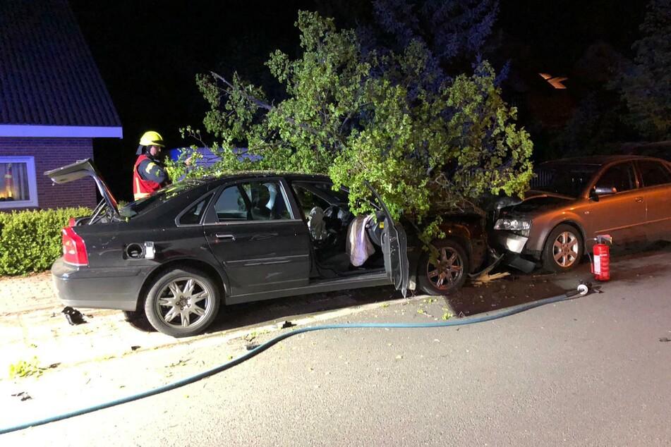 Im Suff: Mann mäht Bäume nieder und crasht drei Autos