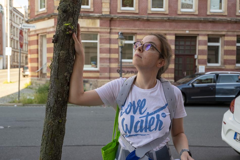 Nicht viel breiter als ein Arm, ausgetrocknet und das Zuhause einer Ameisenkolonie: Hält dieser Baum auf dem Sonnenberg noch einem Sturm Stand? Karola Köpferl (30, Grüne) sorgt sich um den Baum.