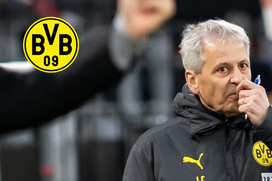 """""""Favre raus""""! BVB-Fans hetzen nach Blamage gegen den Trainer"""