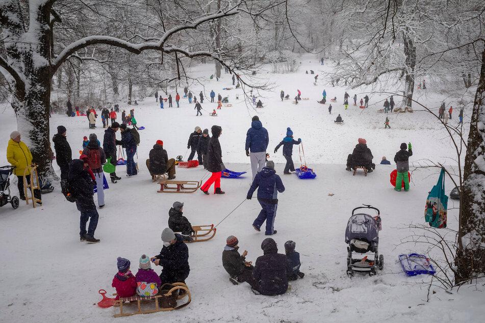 Erwachsene und Kinder genießen in den Maximiliansanlagen nahe dem bayerischen Landtag die frisch verschneiten Hügel in der bayerischen Landeshauptstadt.