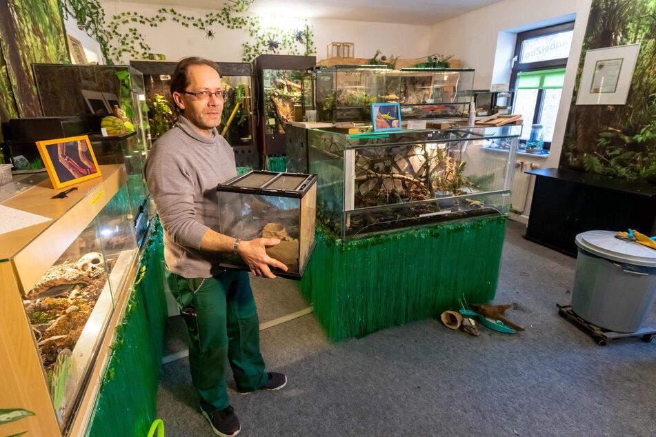 Rund 60 Krabbeltierchen hatte Renner in seinem Privatzoo. Oft kamen auch Schülergruppen, um sich Schlangen, Geckos und Co. anzuschauen.