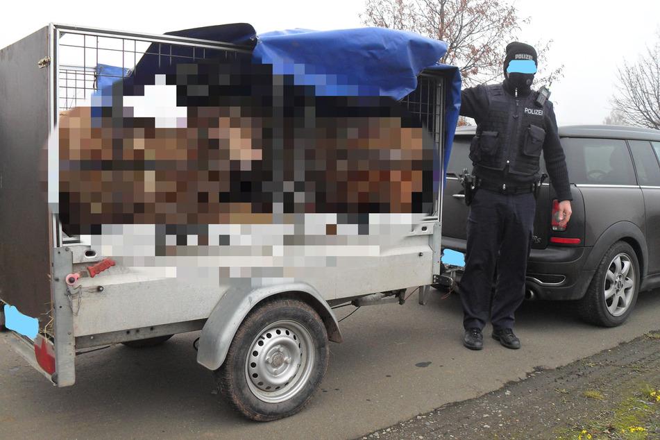Als Polizei Plane von Anhänger lüftet, offenbart sich ein grausamer Anblick