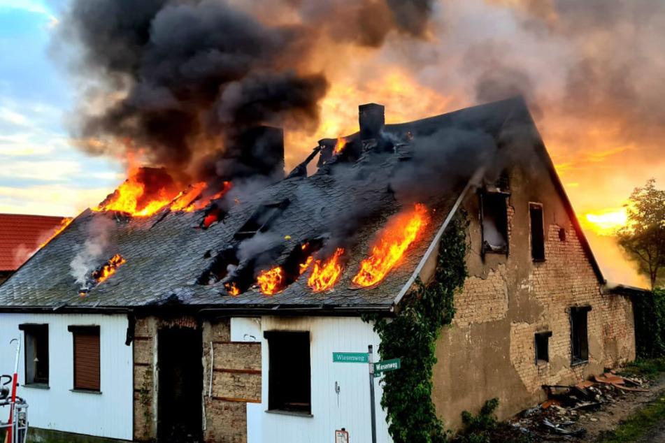 Verletzte wurde bei dem Brand niemand.