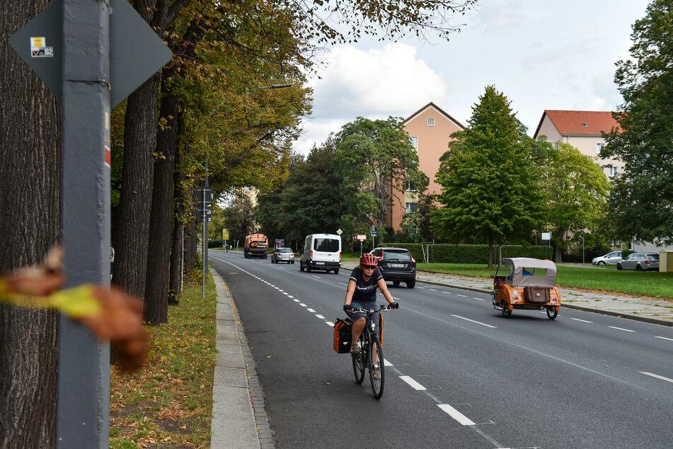 Der Radschutzstreifen zwischen Carola- und Albertbrücke war Donnerstag bereits fertig.