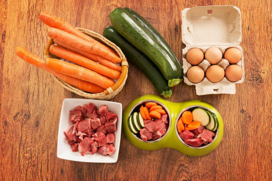 Fleisch und Gemüse bilden eine super Grundlage für selbstgemachtes Hundefutter.
