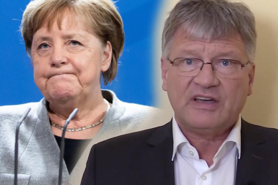 """""""Wie eine Gouvernante"""": AfD-Politiker Meuthen schießt scharf gegen Merkel"""