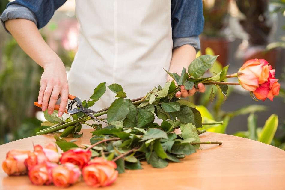 Büro-Blumen für Armin Laschet: Staatskanzlei sucht Floristen
