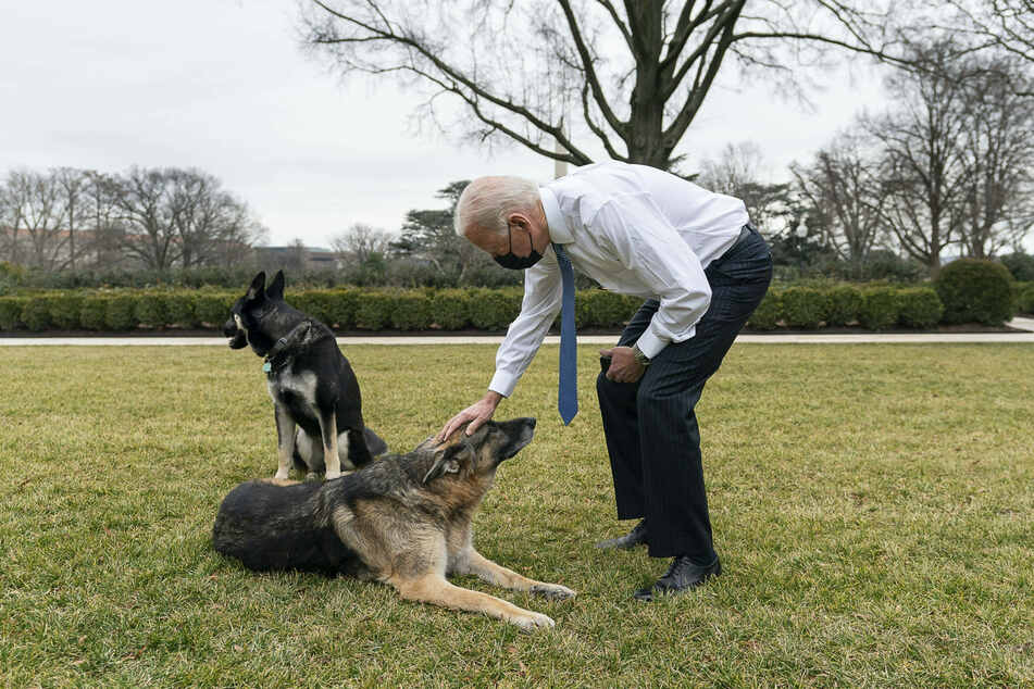 President Joe Biden loves his dogs, but one of them is making trouble in the White House.