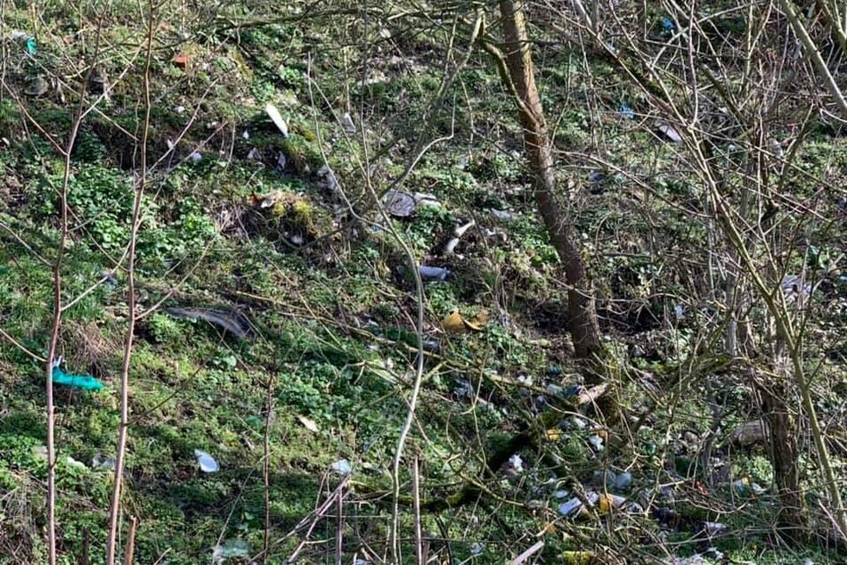 Der Nahleberg ist bedeckt von Müll, der teilweise sogar noch aus DDR-Zeiten stammt.