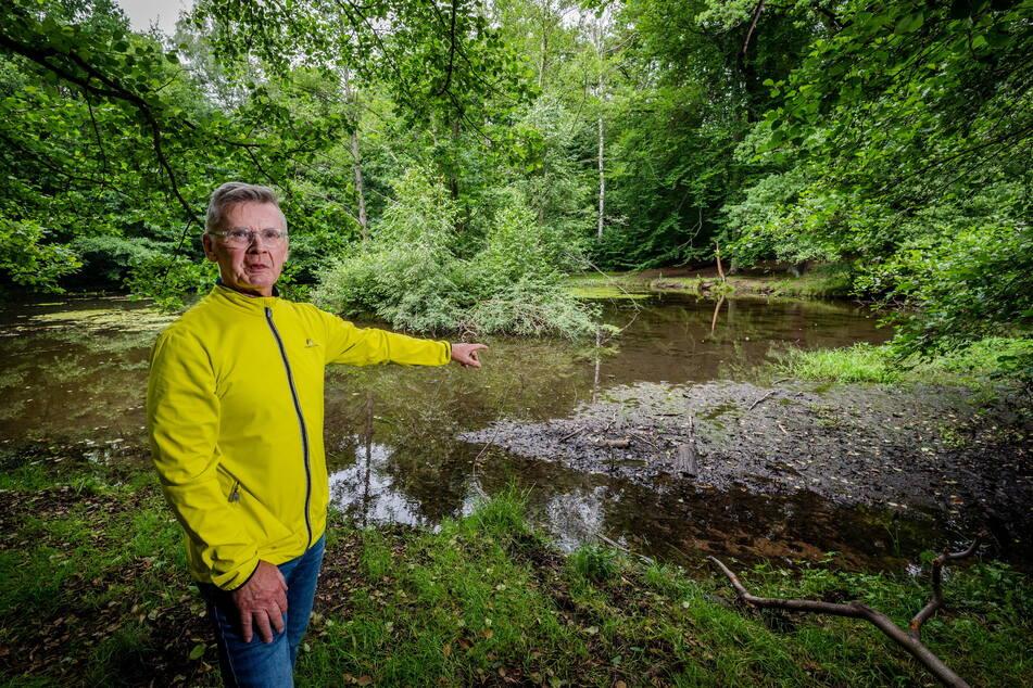 Der Zustand vieler Chemnitzer Teiche lässt zu wünschen übrig. Der Befund des Bürgers Frank Bihra (70) für den Blaubornteich im Zeisigwald sieht entsprechend düster aus.