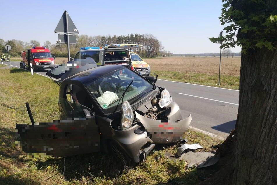 Zwei Verletzte bei Smart-Unfall, ein kleiner Vierbeiner bleibt unversehrt