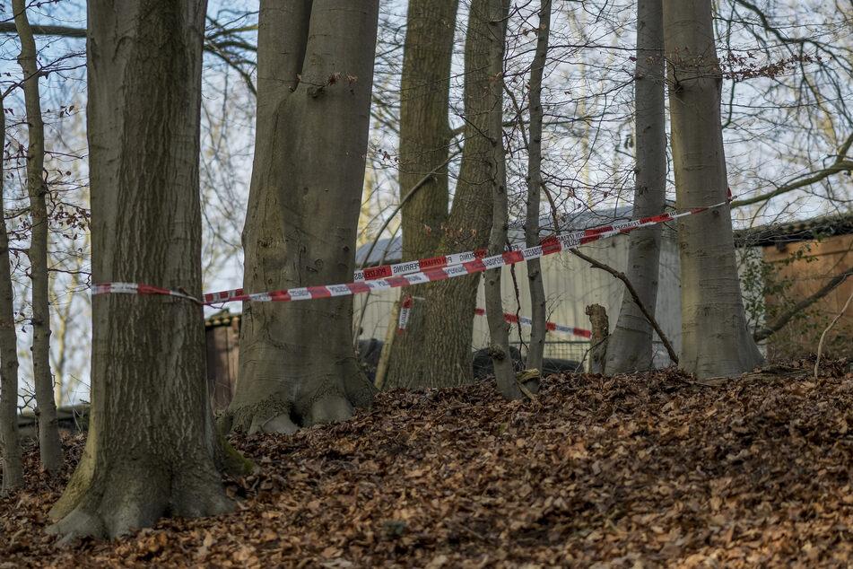 Versteck von Linksterroristen entdeckt? LKA untersucht Funde aus Wald-Bunker