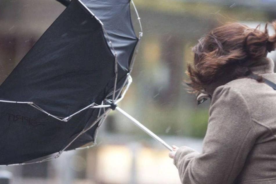 Regen, Schnee und Sturm! Igitt-Wetter am Wochenende