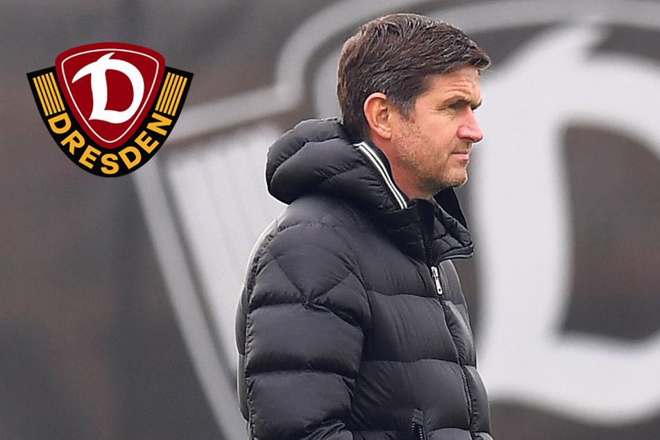 """Dynamo-Sportchef Becker: """"Wenn du Tabellenführer bist, willst du am Ende nicht Vierter werden"""""""