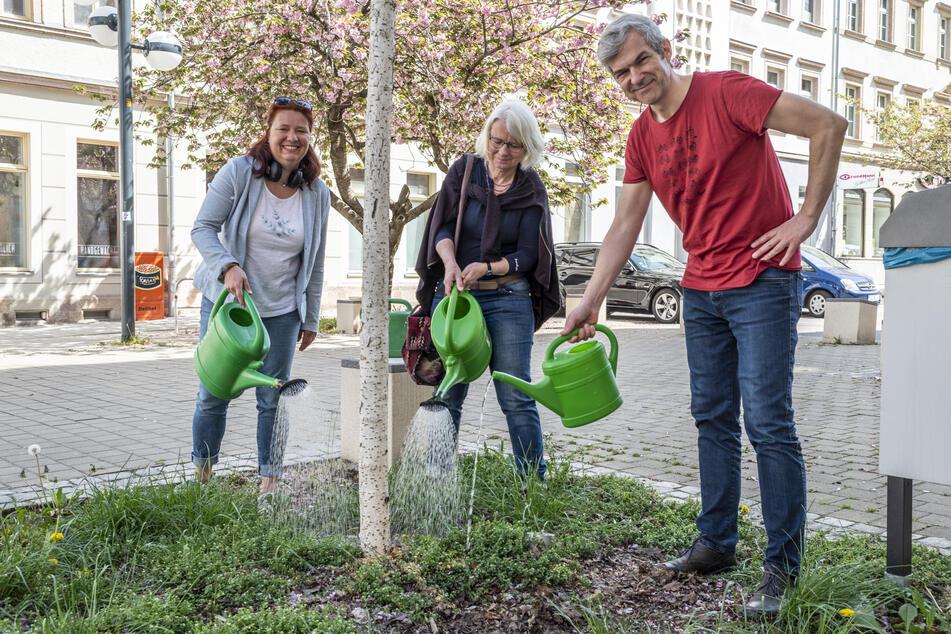Die Grünen-Stadträte Kathleen Kuhfuß (41), Katharina Weyandt (59) und Volkmar Zschocke (51) gießen einen Jungbaum in der Herrmannstraße. Sie warnen vor einem Baumsterben.