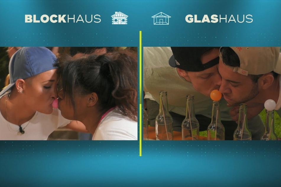 """""""Küssen"""" durften sich die Bewohner bereits am Montag in der Live-Show - zumindest fast: Hier ging es zwar nur darum, Bällchen mit dem Mund auf Flaschenhälse zu setzen... Das dürfte der bisexuellen Michelle (26, re.) sicher gefallen haben."""