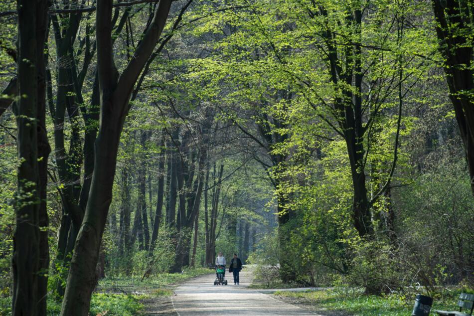 Zwei Menschen mit Kinderwagen gehen spazieren.