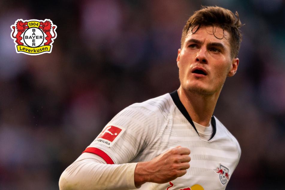 Patrik Schick kommt! Bayer Leverkusen rüstet für 26,5 Millionen Euro auf