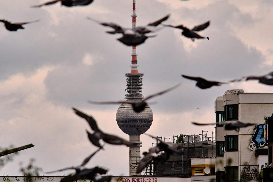 Graue Wolken prägen wie hier am Berliner Alexanderplatz das Bild der kommenden Tage.