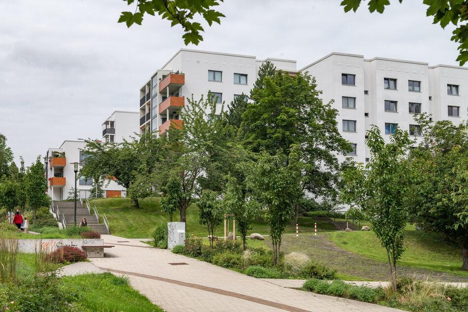 Die Höhenpromenade in Gorbitz gehört zu den schönsten Seiten des Stadtteils.