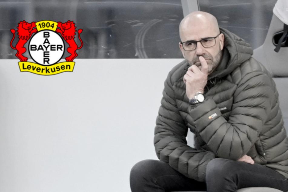 Bosz-Beben bei Bayer 04: Leverkusen feuert seinen Trainer! Nachfolger steht fest
