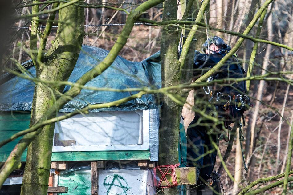 Letzte Baum-Besetzer verlassen Bahnhofswald