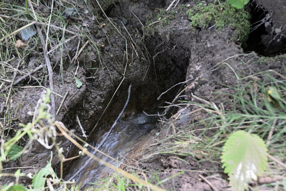 Hier tritt eindeutig Wasser aus.