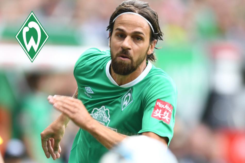 Harnik-Hammer! Ex-Bundesliga-Profi wechselt zu Amateurclub