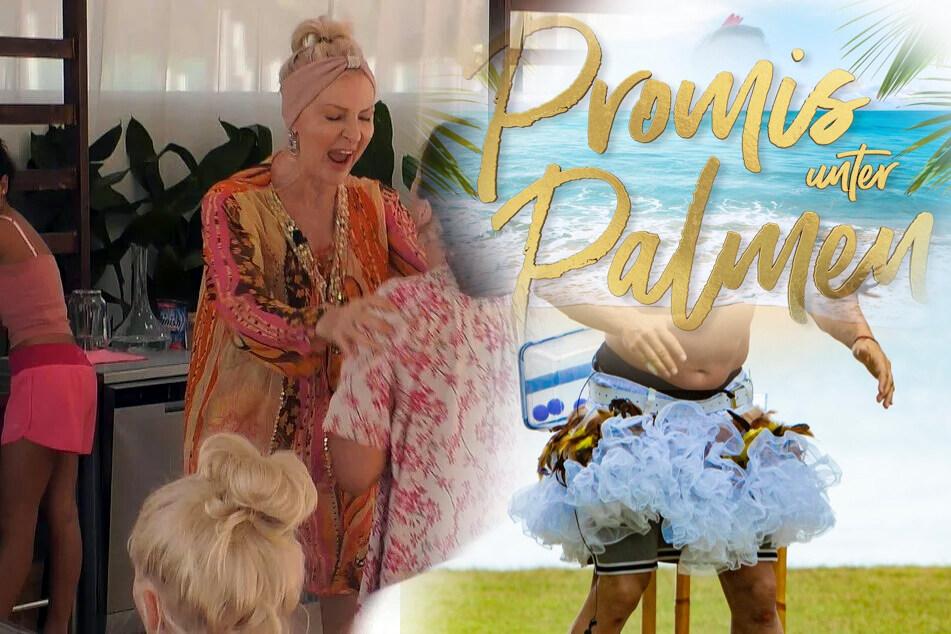 Promis unter Palmen: RTL verrät schon den Sieger der Show