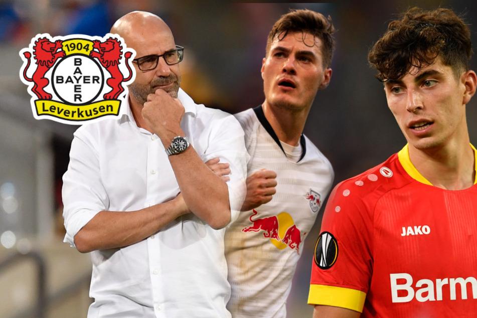 Bayer 04 Leverkusen in der Bundesliga-Vorschau: Auf dem Sprung in die Champions League?