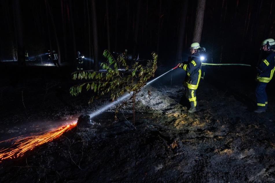 Die Feuerwehrleute suchen im Wald nach Glutnestern und löschen sie.
