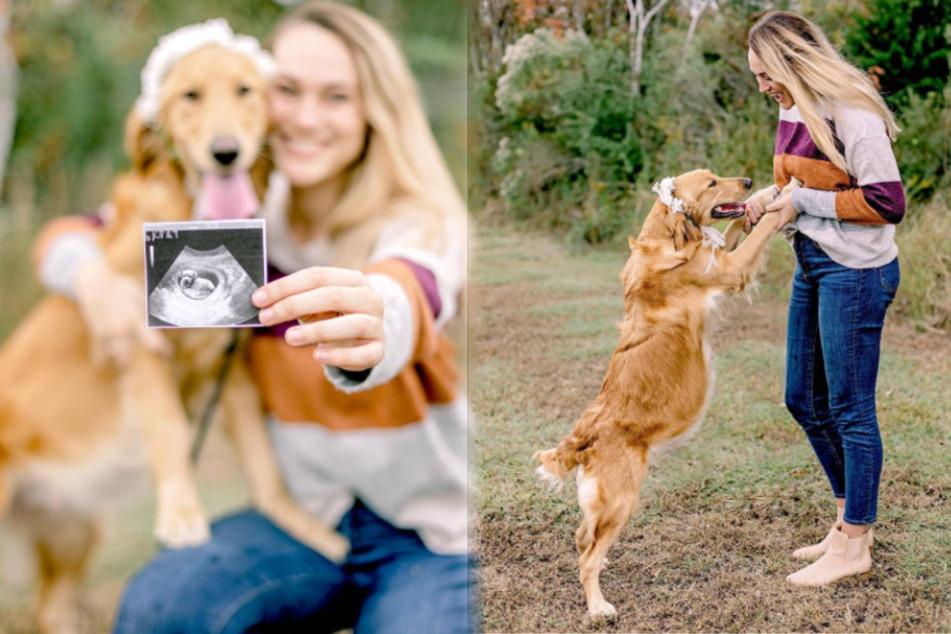 Um einer schwangeren Pflegehündin zu helfen, fasst diese Frau einen genialen Plan