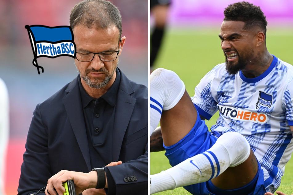 Besonderere Rückkehr für Bobic und Hertha-Star Boateng, aber spielt der Prince auch?