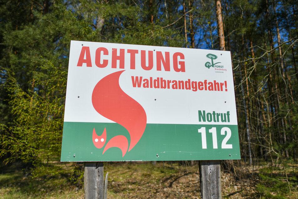 """Ein Schild vom Landesbetrieb Forst Brandenburg mit der Aufschrift """"Achtung Waldbrandgefahr! Notruf 112"""" steht an einem Wald. (Archivbild)"""