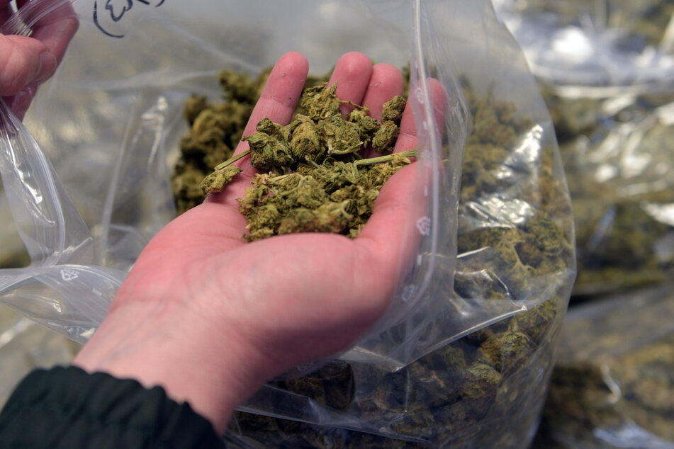 Immer wieder ermittelt der Staatsanwalt im Umfeld der KMN-Gang im Zusammenhang mit Marihuana. (Symbolbild)