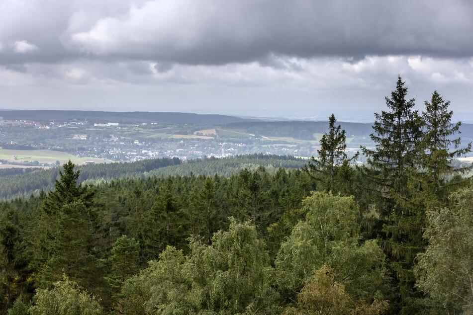 Hobbyforscher vermuten das im Zweiten Weltkrieg verschollene Bernsteinzimmer im Taubenberg bei Rodewisch.