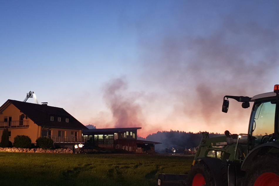 Stall fängt an zu brennen, Tiere müssen in Sicherheit gebracht werden