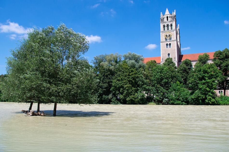 Bäume stehen am Ufer der Isar im Wasser. Nach den Regenfällen hat die Isar am 06.08.20 einen erhöhten Pegelstand.