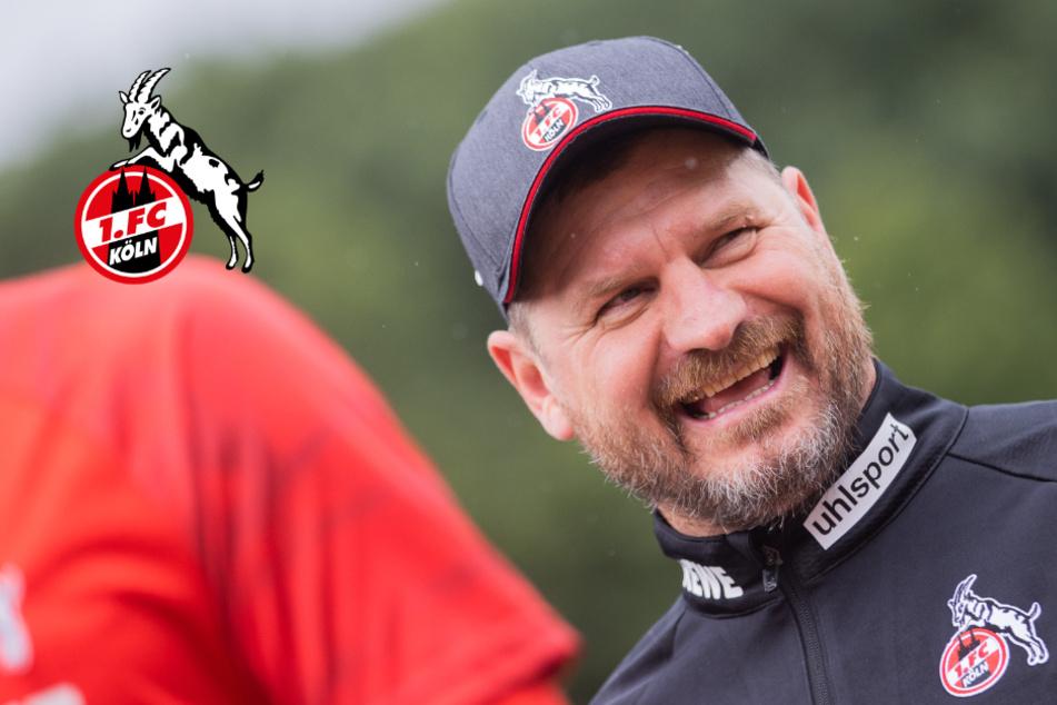 1. FC Köln: Trainer Steffen Baumgart verlangt Tore, Tore, Tore!