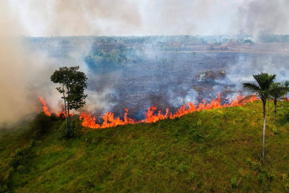 Fires are surging in the Amazon region.