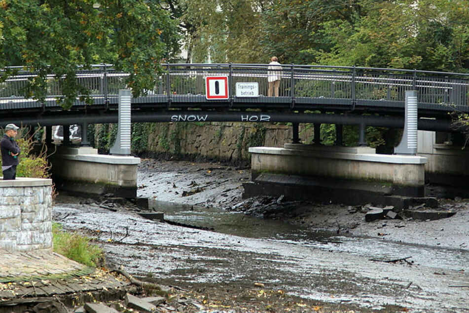 Auch unter der Elstermühlgraben-Brücke hat sich tonnenweise Segment abgelagert.