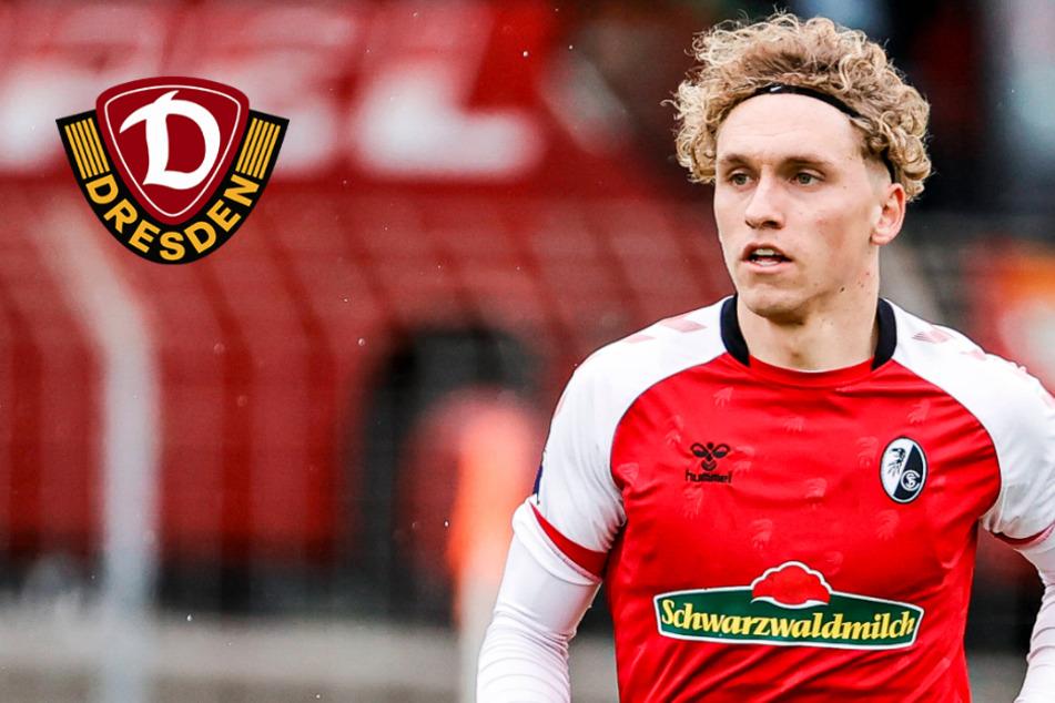 Dynamo rüstet weiter auf! Luca Herrmann kommt vom SC Freiburg