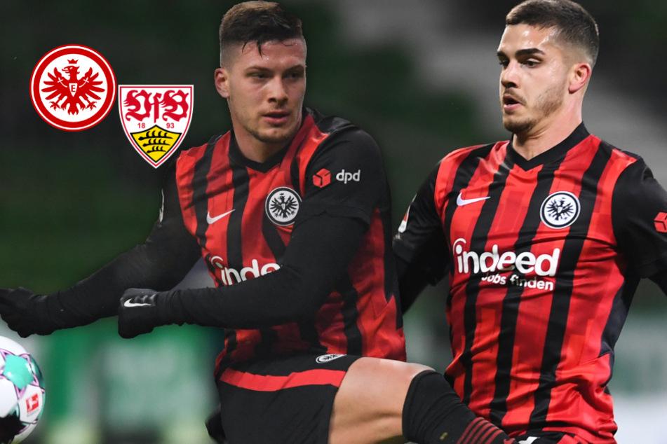 Volle Eintracht-Sturmpower: Luka Jovic und André Silva dürfen gegen den VfB von Beginn an ran