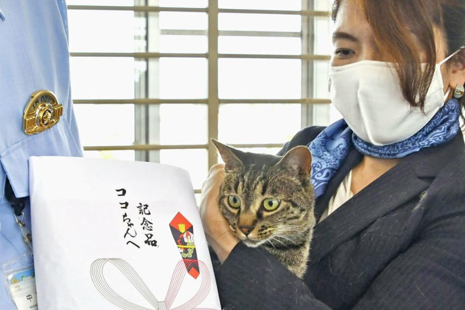 Tomoko Nitta (r) und ihrem Kater Koko wird in der Polizeistation eine Auszeichnung überreicht.