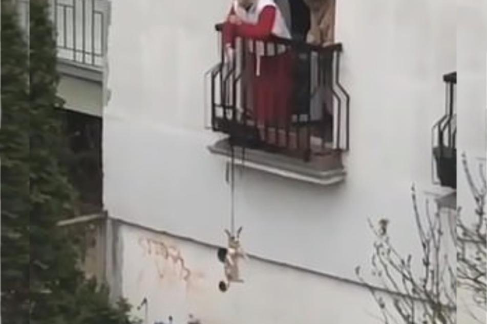 Während die ältere Dame ihren Hund hinab seilt, schaut ihr eine weitere Frau zu.
