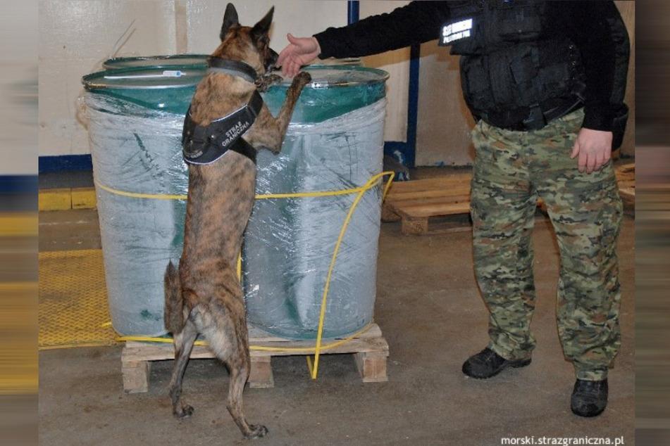 Im Einsatz waren auch Drogenhunde.