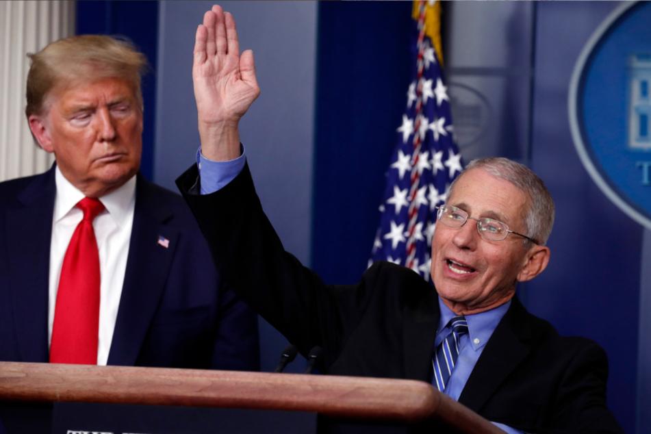 Werden in diesem Leben wohl keine Freunde mehr: US-Präsident Trump (74) und Experte Anthony Fauci (79).