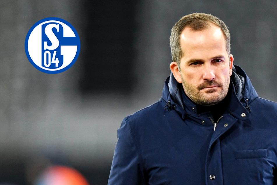 Türkgücü oder Schweinfurt? Pokal-Gegner des FC Schalke 04 steht fest!
