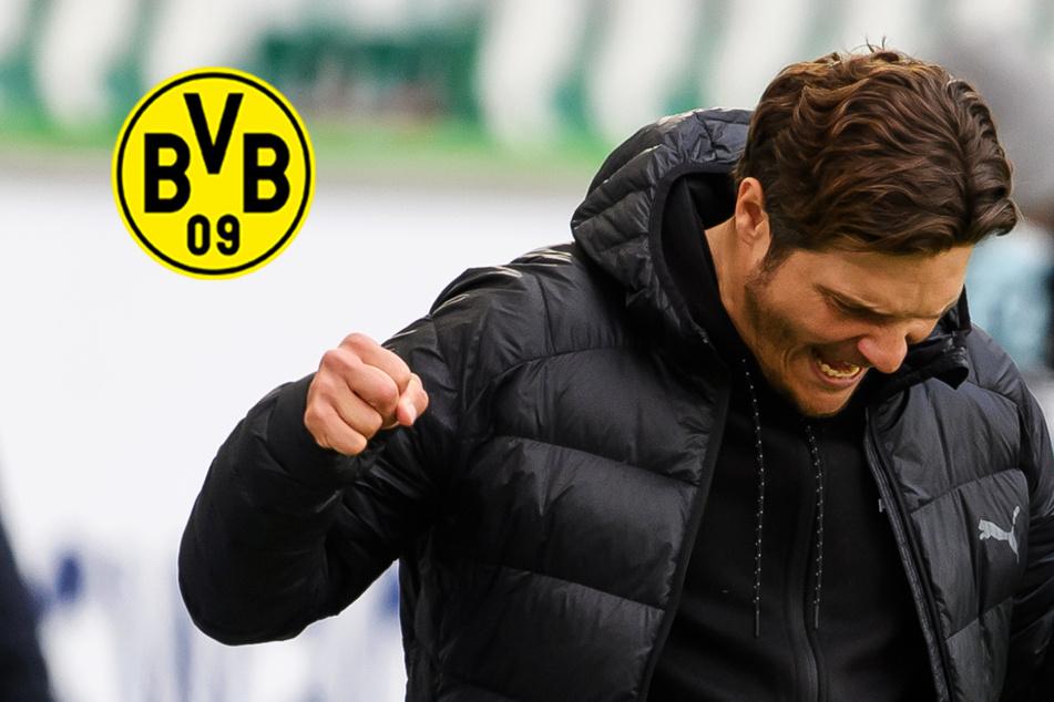 BVB bis auf einen Punkt an Champions-League-Plätzen dran: Serie zur rechten Zeit!